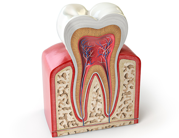 myths-of-a-root-canal